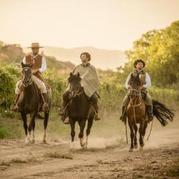 Gauchezco Vineyard and Winery