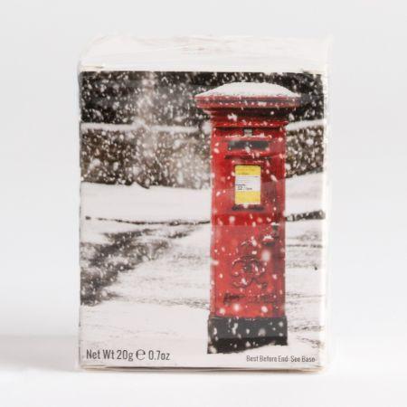 20g New English Teas Tea Bags in Christmas Design Box (10)